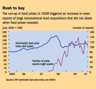 rush to buy