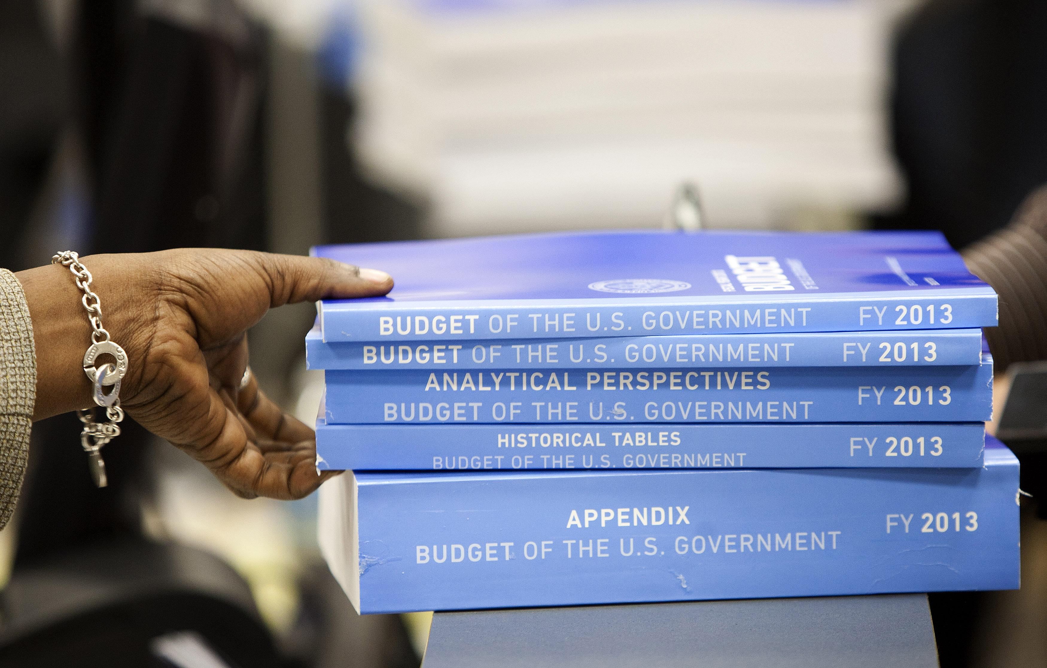 federal_budget008