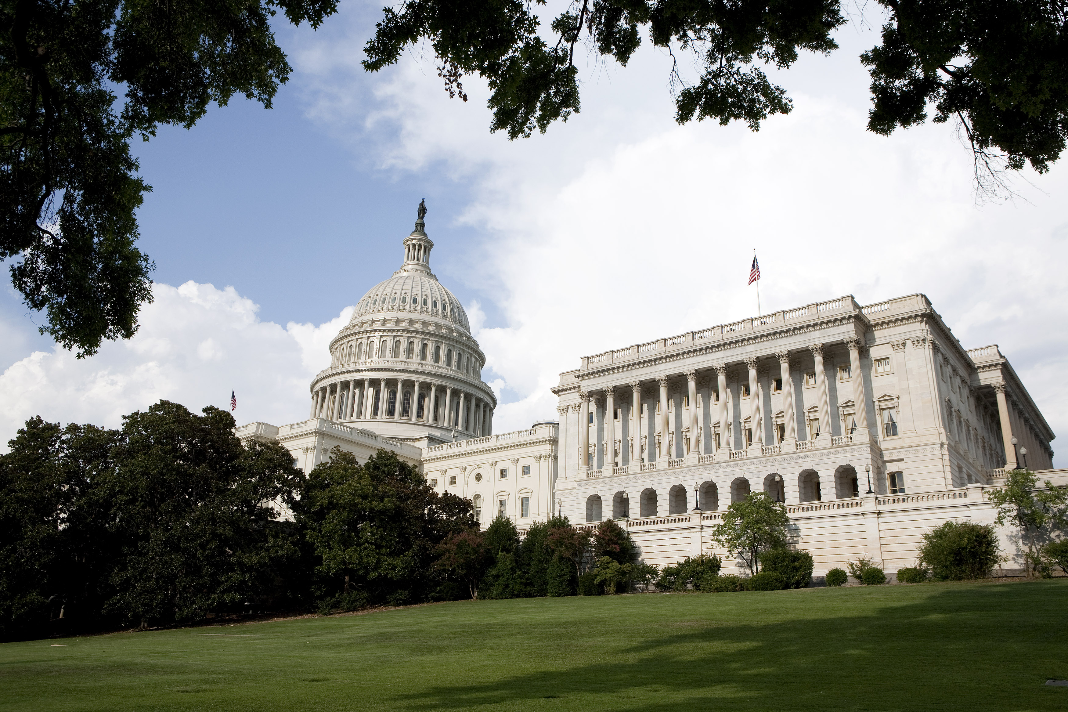 Congress may tell courts to ignore regulatory agencies