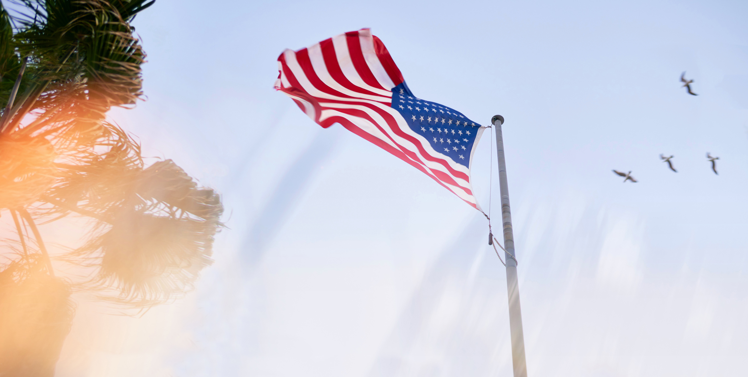 American Flag With Light Flare, Through Prism Optics