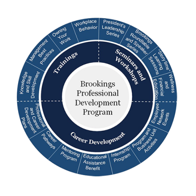 professional-development-wheel
