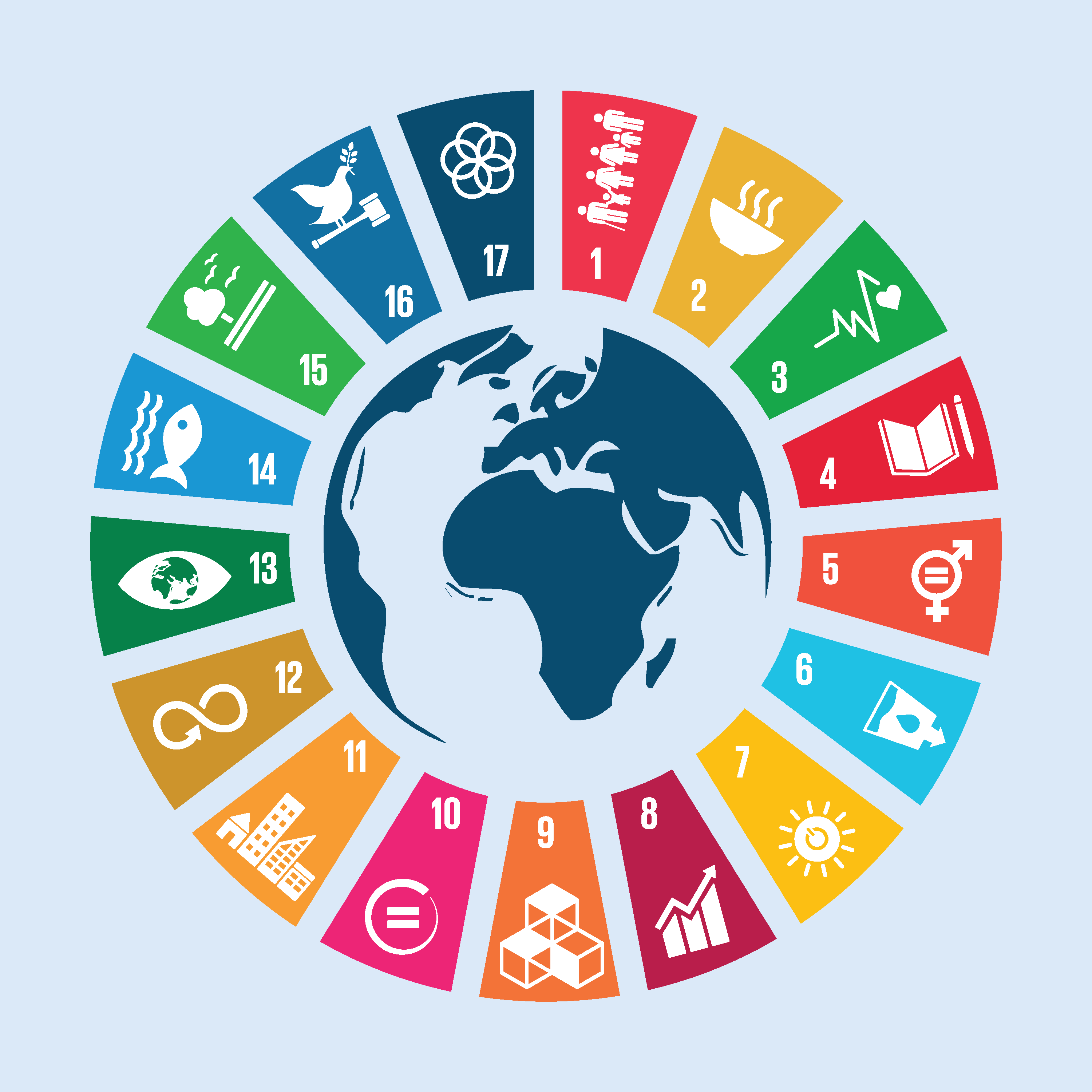 Strategies for delivering on the Sustainable Development Goals: Some lessons from Rwanda