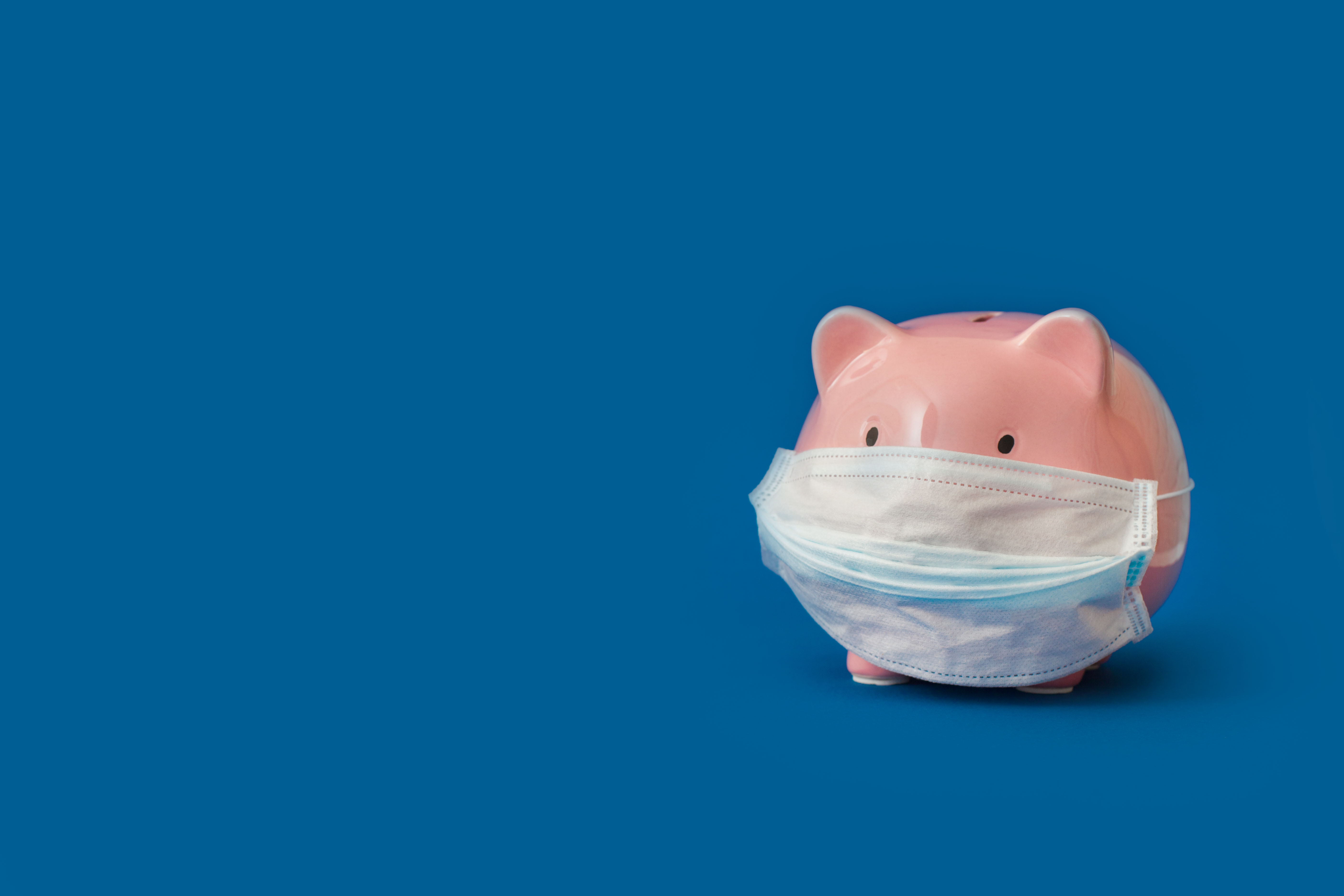 Piggy Bank with a surgical mask on.