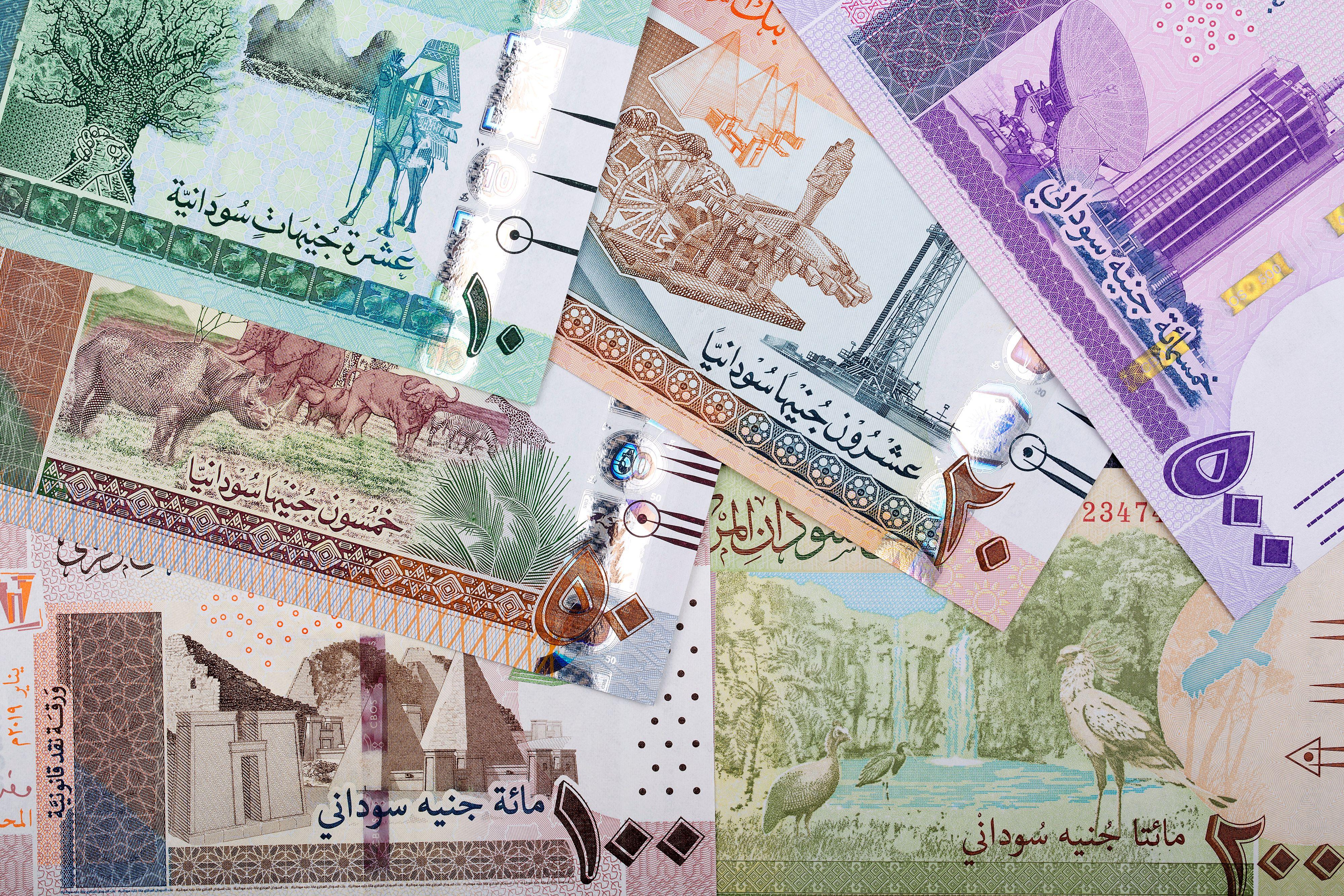 Sudanese pounds
